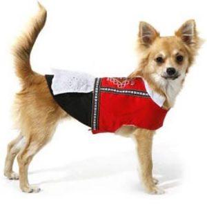 5549944f Dogs of Norway Bunad Hardanger tispe   Flere størrelser